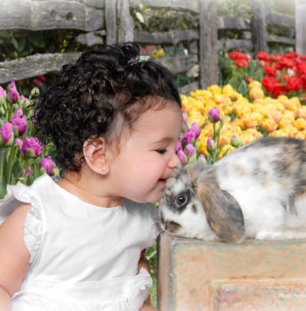Easter 31