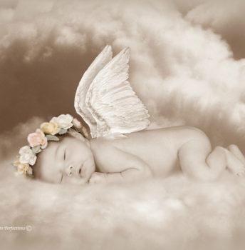 newborn20
